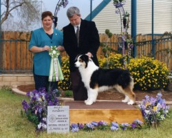 Best in Futurity and Best in Sweepstakes