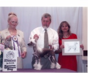 2002 Reserve Winners Dog ACCC National Specialty, 1st Place BBX Dog