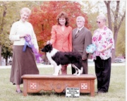2006 BCSA National Specialty Winners Dog