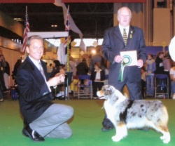 Best Of Breed Cruts Judge Mr Jeff Luscott