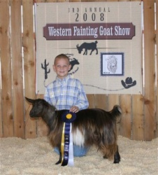 Grand Champion Jr Doe